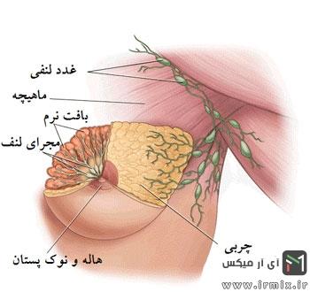 روش انجام ماموگرافی