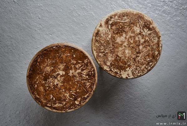 mycelium-timber-3