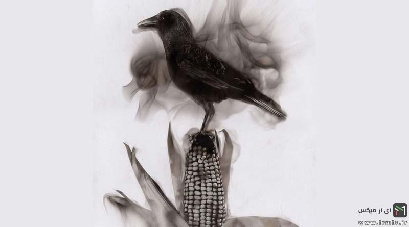 تصاویر جالب و دیدنی از نقاشی با آتش و دود