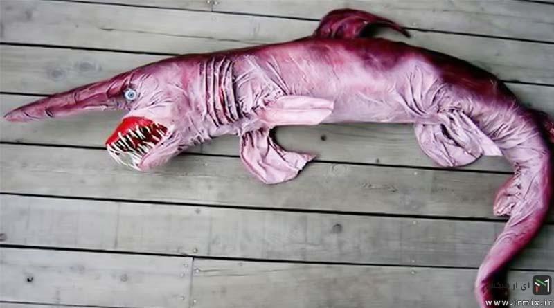 موجودات عجیب و غریب دنیا، موجودات ترسناک، موجودات در حال انقراض، موجودات کمیاب، عکس عجیب ترین حیوانات دنیا
