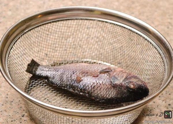 طبخ ماهی با سبد زودپز