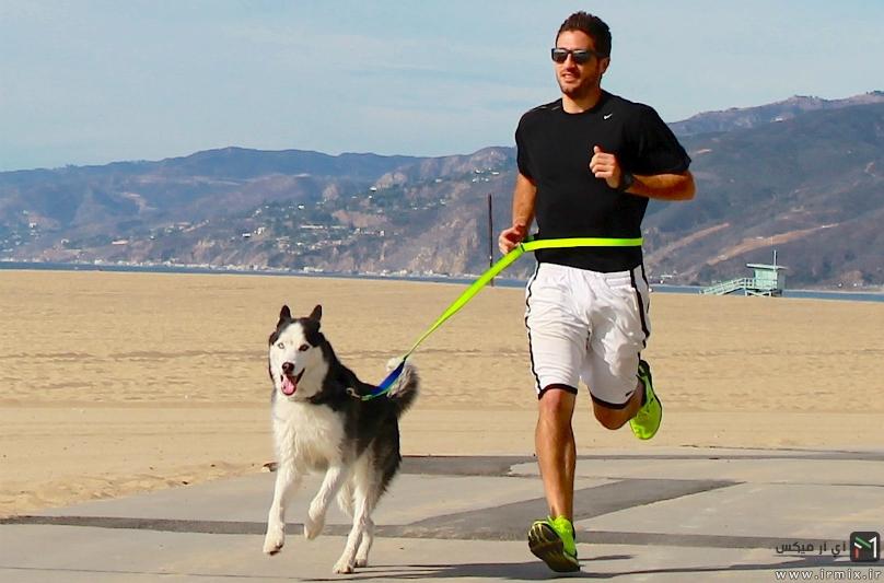 دویدن با سگ