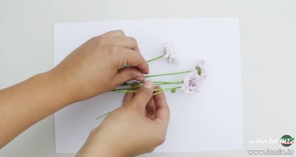 گذاشتن گل روی کاغذ