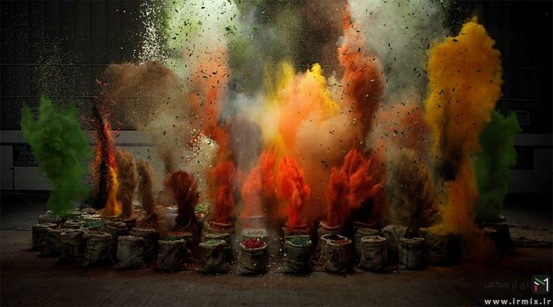 انفجار گیاهان : اتفاقی پنهان از چشمان ما
