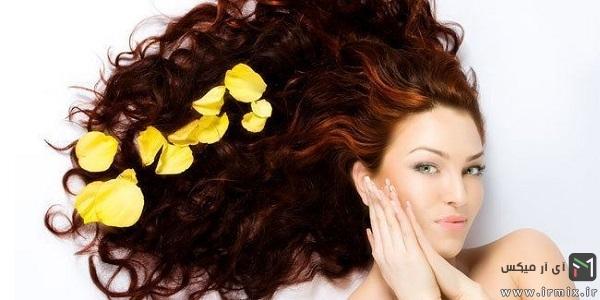 7-Herbs-to-Improve-Hair-Health-header