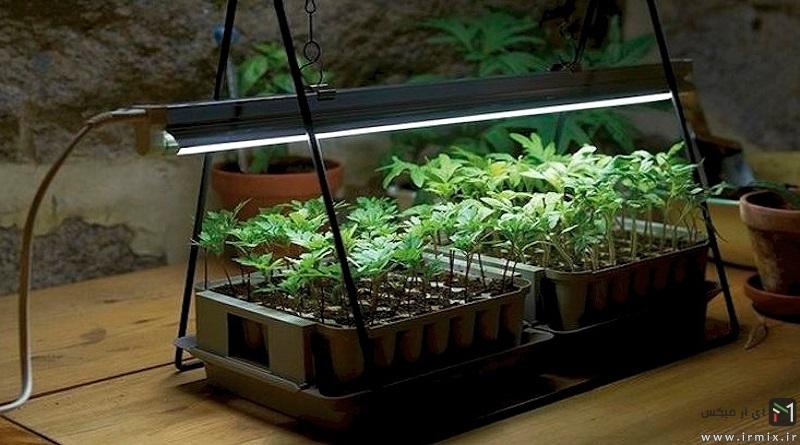 آموزش ساخت بهترین نور مصنوعی برای گیاهان آپارتمانی