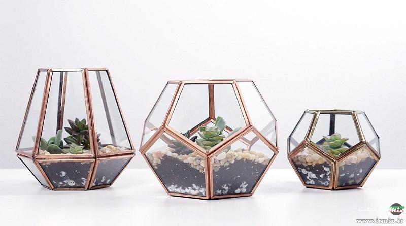 کاملترین آموزش تصویری طرز ساخت تراریوم گیاهی و آبی در خانه