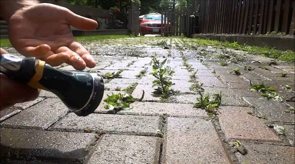 How to Remove and Prevent Weeds in Walkways