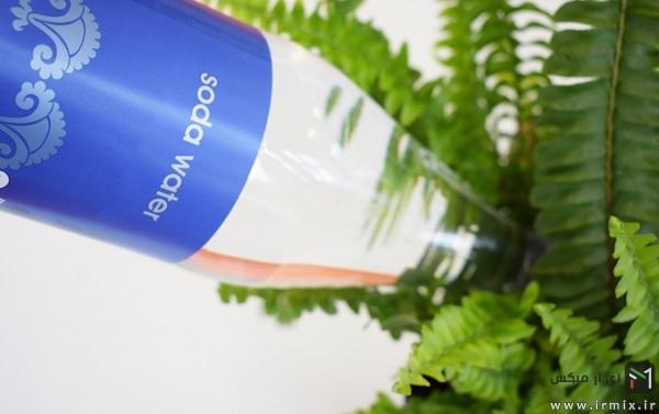 soda-water-on-plants